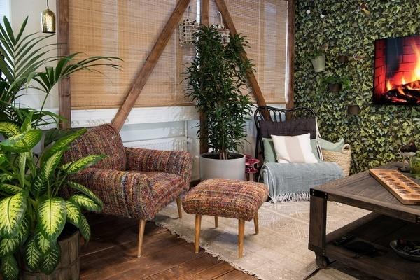 green oasis room
